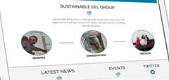 Samenwerking wetenschap NGO's en sector