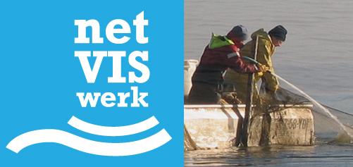 Huisstijl & website voor netVISwerk