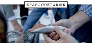 Nieuwe blogsite voor vis-journalist